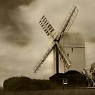 Post Mill by Di Dowsett