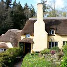 Selworthy Cottage by Dave Law