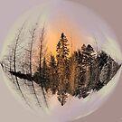 Encircled ! by Elfriede Fulda