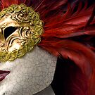 Venetian Mask by Stephen Knowles