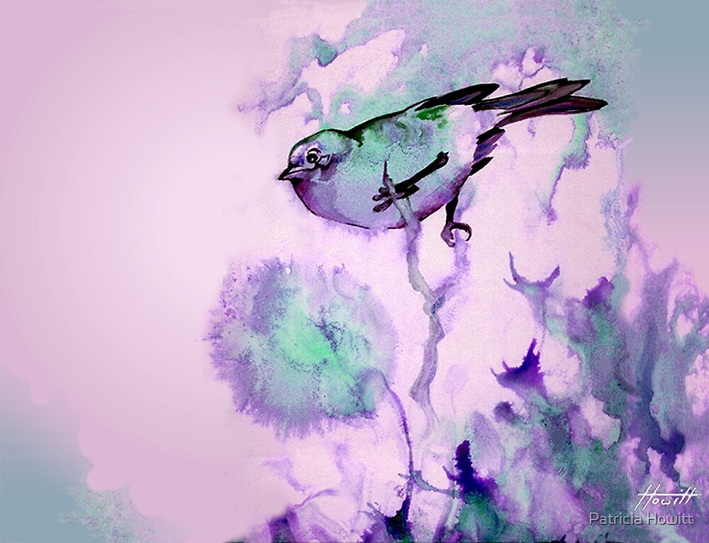 Finch Bird by Patricia Howitt