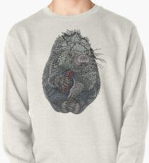 Porcupine Pullover Sweatshirt