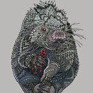 Porcupine by ZHField