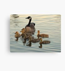 Mother and Babies Canvas Print
