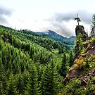 Oregon High Cascades in the Green by Charles & Patricia   Harkins ~ Picture Oregon