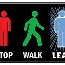 Quantum Leap Pedestrian Sign by PaulGCornish
