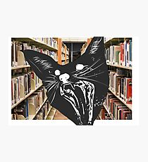 Library Surprise  Photographic Print