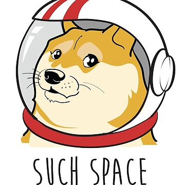 DOGE Astronaut - SUCH SPACE by gettinitnow