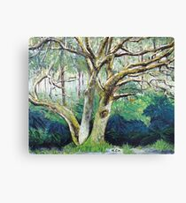 BY NATURE Canvas Print