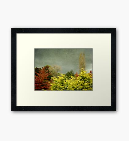 New England Autumn Framed Print