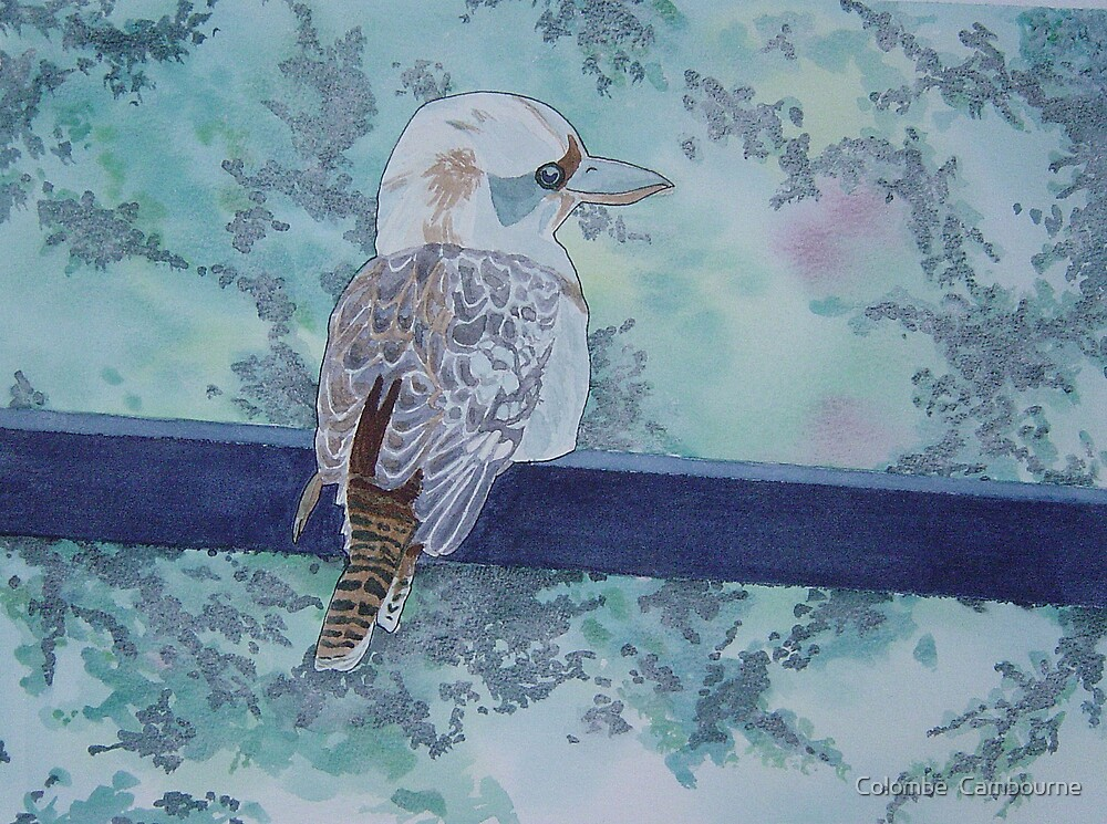 The kookaburra by Colombe  Cambourne