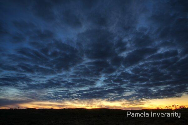 Tortoise Shell Sky by Pamela Inverarity