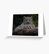 Gobi Greeting Card