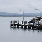 Reemere resting at Crowdy Harbour by Graham Mewburn