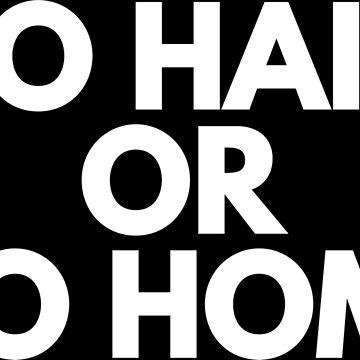 GO HAIM OR GO HOME by rozapete