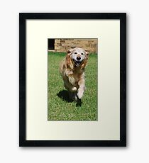 Winners are Grinners! Framed Print