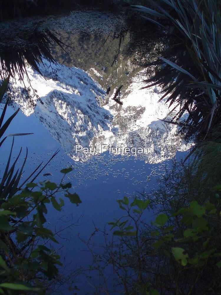 Mirror Image by Paul Finnegan
