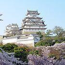 Spring in Himeji - Japan by aerdeyn