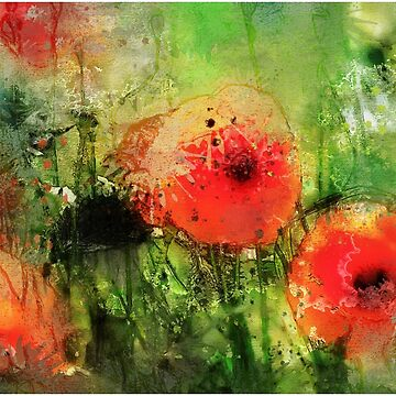 English Poppies by johnlynchstudio