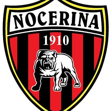 Nocerina Nocera Calcio serie C serie B Campania soccer ultras by domskalis