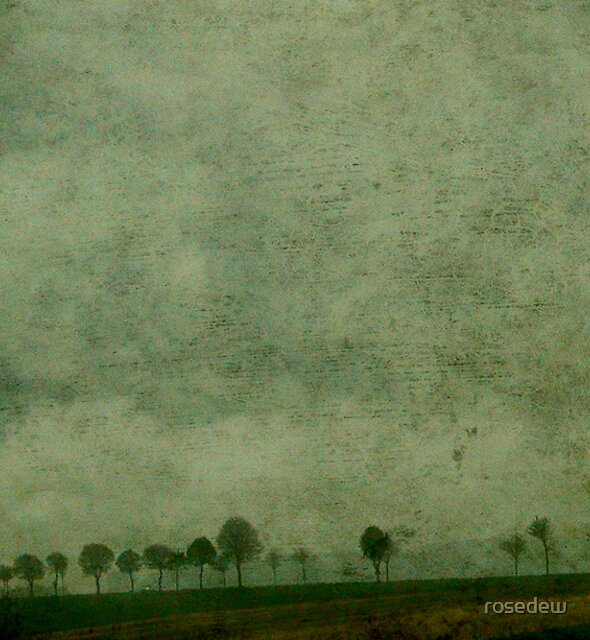 A Line of Trees by ROSE DEWHURST