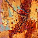 Tree Bark Collection Abstract Collection #3 by Philip Johnson