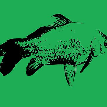 Prussian carp, black and white gold fish by mary02
