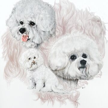 Bichon Frise Medley by BarbBarcikKeith