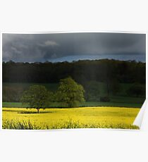 Rape field set against an angry sky Poster