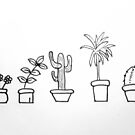 Plants in Pots by drawn2design