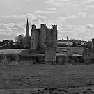 Trim Castle by MariaVikerkaar