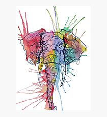 Colorful Watercolor and Ink Elephant Photographic Print