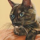Angel the tortoiseshell cat by cathyscreations