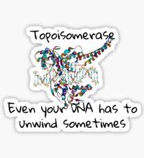 Topoisomerase Sticker