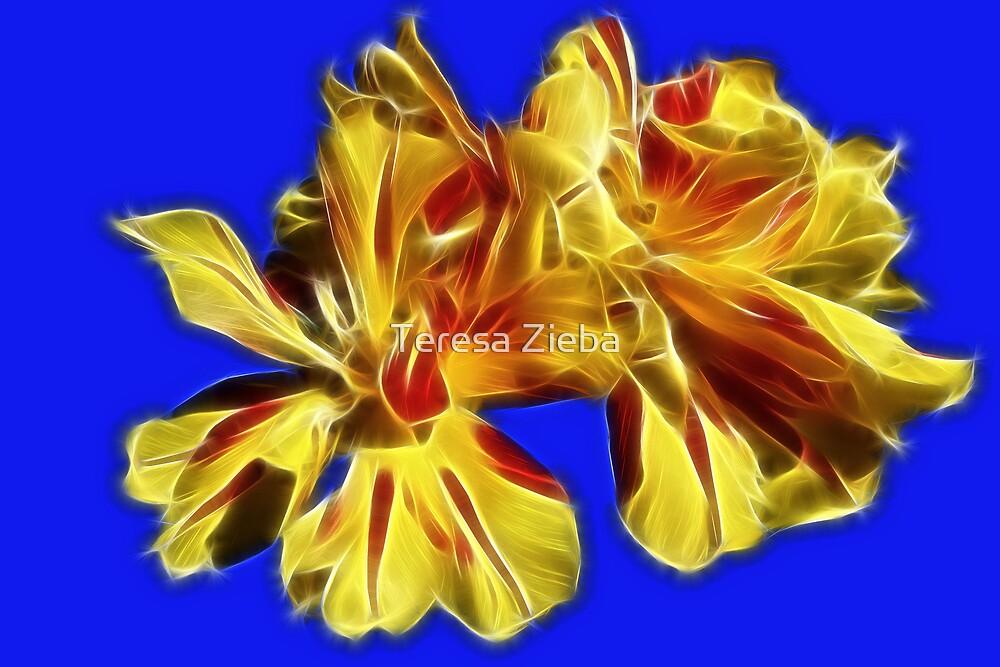 Splash of Spring Colours by Teresa Zieba