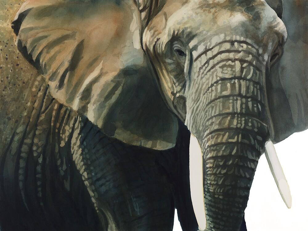 Quot Quot Elephant Quot Wildlife Animal Watercolor Quot By Paul Jackson