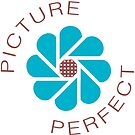 Picture Perfect by graphic-city