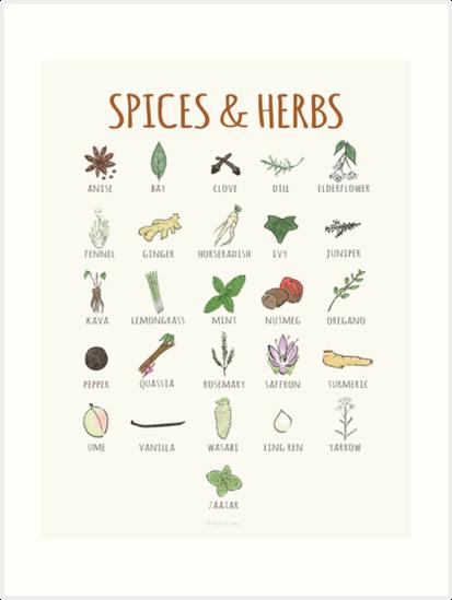 A-Z Spices & Herbs by mayaplim