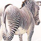 """Wrong Way"" Zebra Wildlife Watercolor by Paul Jackson"