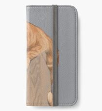 Cat Study Image iPhone Wallet/Case/Skin