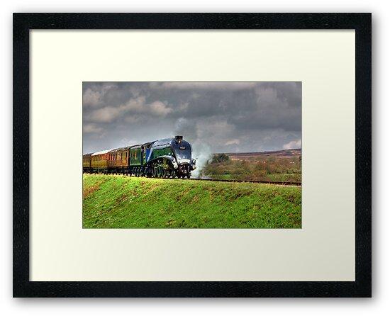 Flying Scotsman by Trevor Kersley