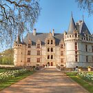 Chateau D'Azay-Le-Rideau by Michael Matthews