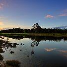 Ash Island at Dusk by Mark Snelson