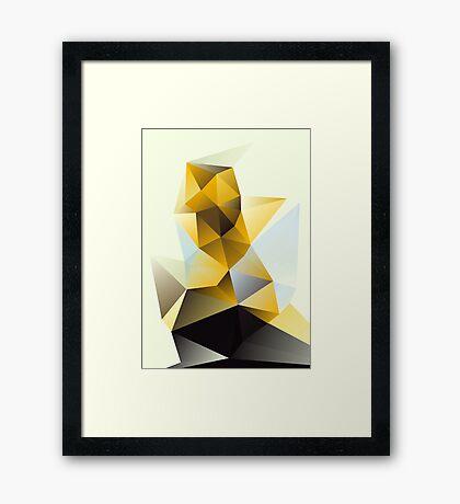 Chunk Framed Print