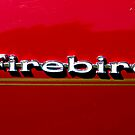 firebird by pmacimagery