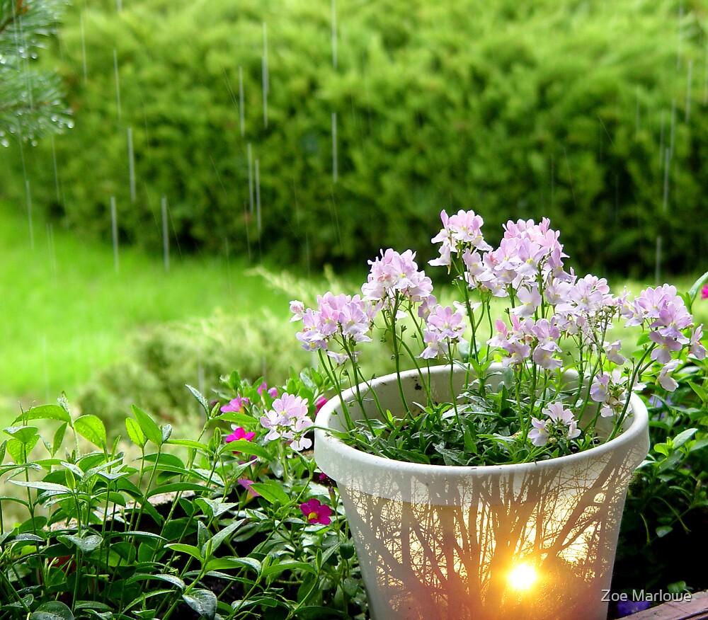 Yesterday's Forecast:  Sunshine Mixed With Rain by Zoe Marlowe