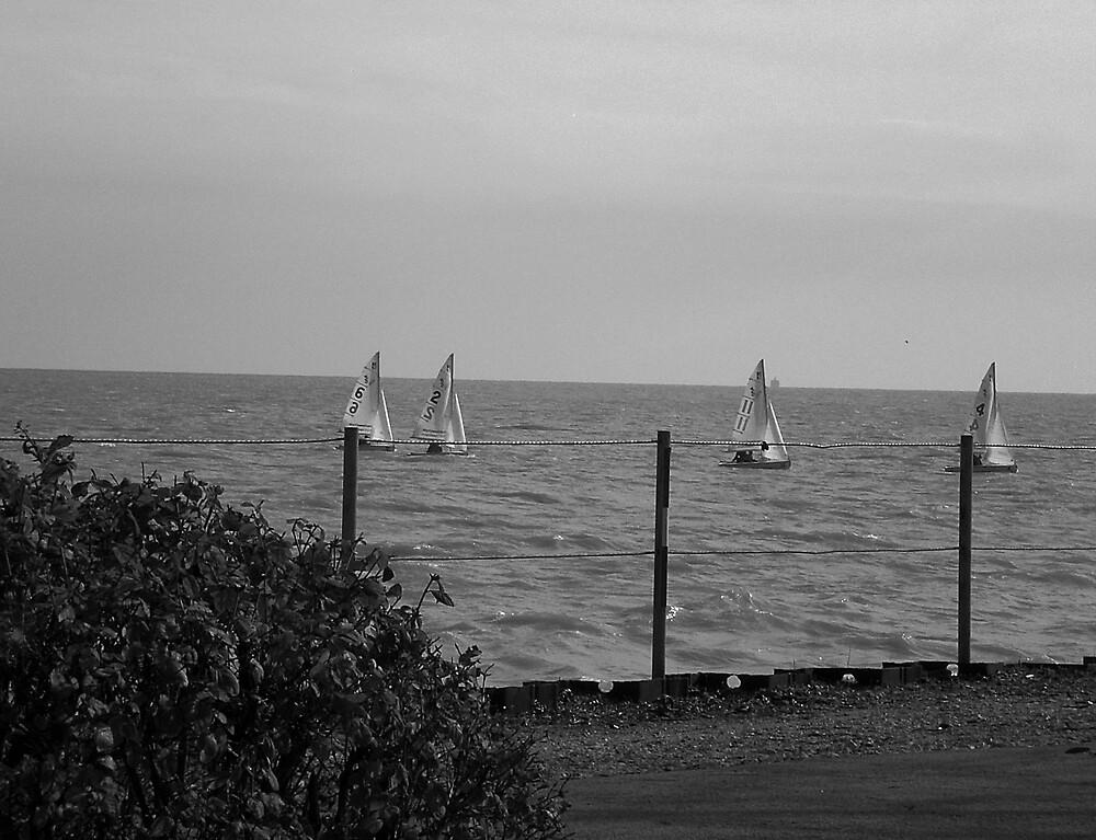 Lake Michigan, from Northwestern Univ. Evanston, IL by Arleen Colon