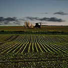 The Ruins of Bacton Abbey by Ruski