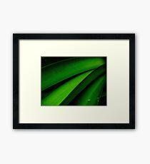 Greener than Green Framed Print