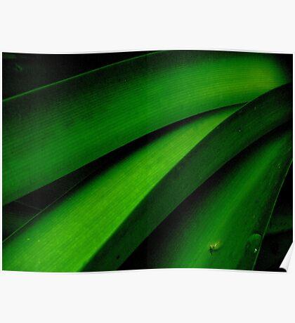 Greener than Green Poster
